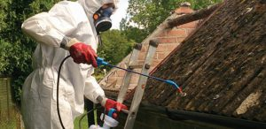 Spraying asbestos roof sheets ready for removal